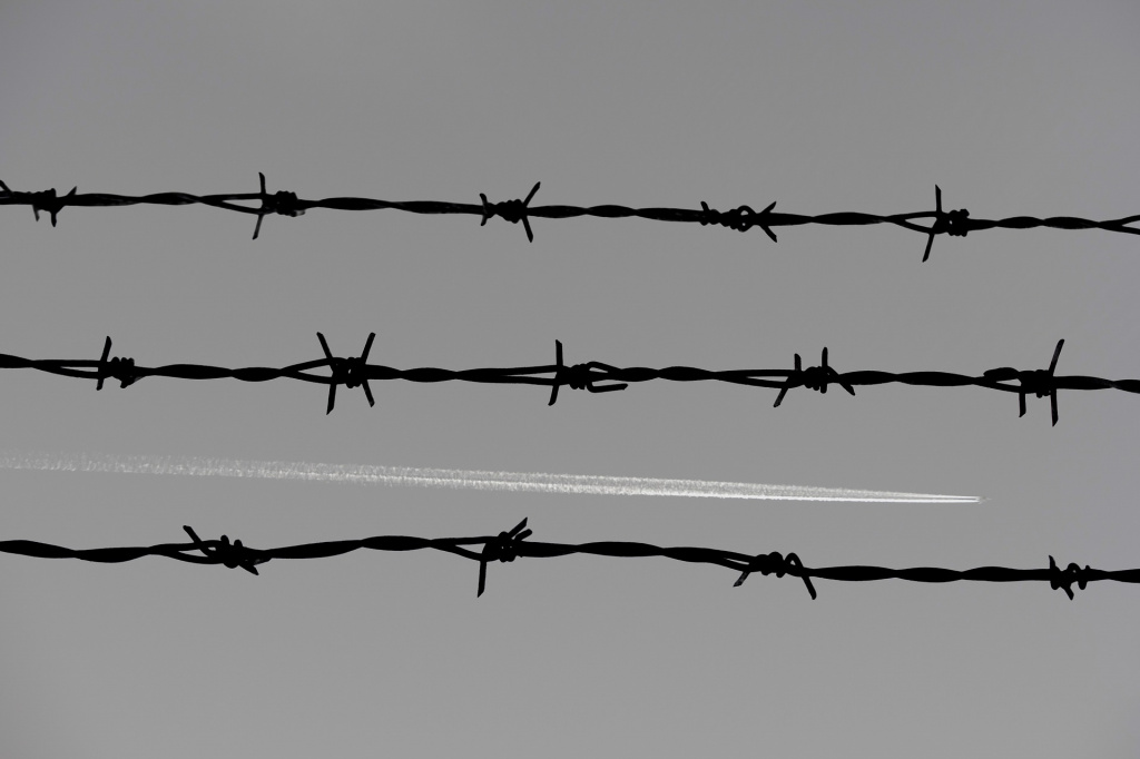 barbed-wire-3244121_1920.jpg